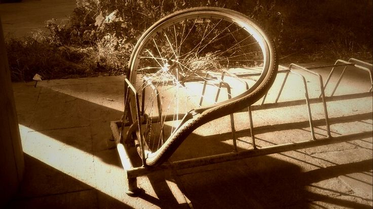 Life is a wheel