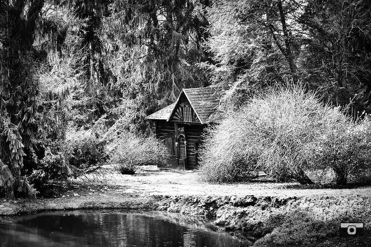 If silence had to have an address it would be here not within my heart not within my soul. #instamood #thoughtoftheday #philosophical #silence #presence #blackandwhite #blackandwhitephotography #monochrome #monochromatic #ff #share #canvas #canvasprints #fineartprints #etsy #etsyseller #nature #serenity