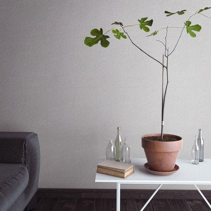Ficus Carica on Behance