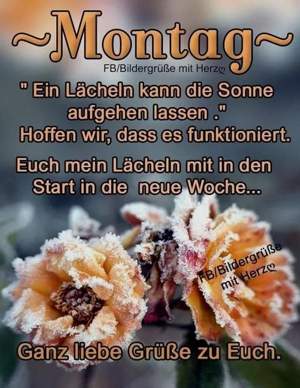Montag Bilder Mit Spruch Kostenlos Montag Montag Morgen Grusse Montag Grusse