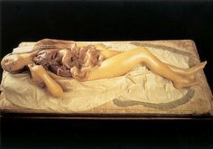 "atomical Venus. フィレンツェ ""ラ・スペコラ""博物館の解剖学蝋人形。解体された女神。"