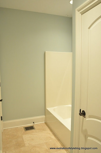 Sea Salt by Sherwin Williams - a pretty blue-green color.
