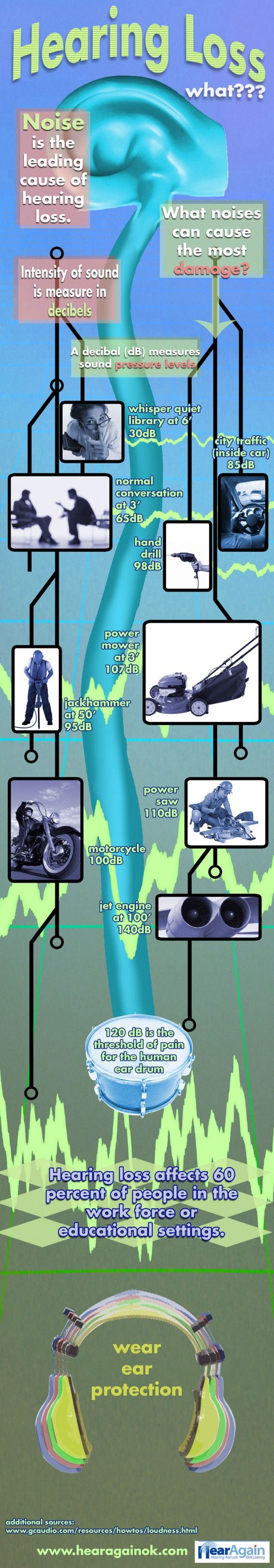 Hearing Loss Due to Noise Decibel Levels Infographic Infographic