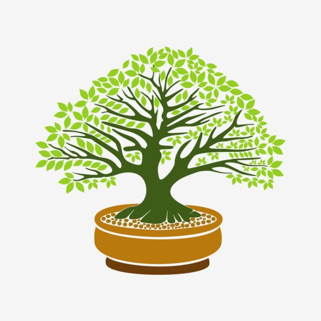 Bonsai Tree Illustration On White Background Isolated Tree Clipart White Background Bonsai Tree Png And Vector With Transparent Background For Free Download Tree Illustration Tree Drawing Bonsai Tree