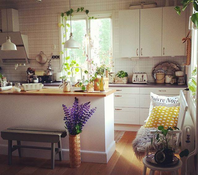 Har herrarna hört hur här har hänt? Kan bara inte somna. Den spanska myggen kalasar på mina barn och är omöjliga att slå ihjäl. Nu längtar jag hem. Till mitt kök. Och Marabou mjölkchoklad med saltlakrits.  #elefantöra #finahem #vackrahem #ditthem #mitthem #retro #interior #interiorforyou #kitchen #kök #lantkök #köpmansdisk #köksö #plåtburk #sandbergs #rut #finahem #estridericson #svenskttenn #elefanter #fårskinn #diy #pinnsoffa #kökssoffa #ranarp #ikea #myresjökök