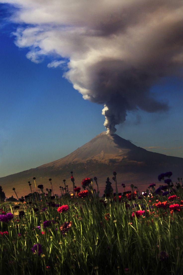 Popocatepet smoking with flowers, Volcano, Mexico.
