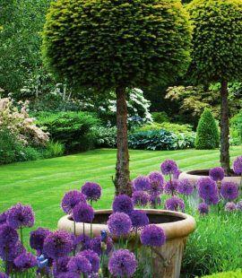 Bahçe tasarımları | Bahcivan Peyzaj