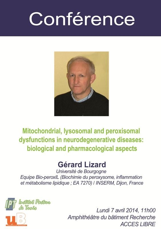 Conférence le 7 avril : Mitochondrial, lysosomal and peroxisomal dysfunctions in neurodegenerative diseases: biological and pharmacological aspects