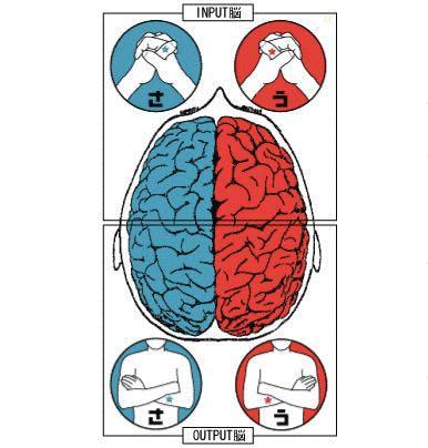 自分の脳が右脳派なのか左脳派なのかで思考の特性が分かる一枚の画像が凄い! @Heaaart - アットハート