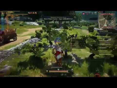 AMD R9 390| BLACK DESERT ONLINE | - FPS TEST - Gameplay Pt 2