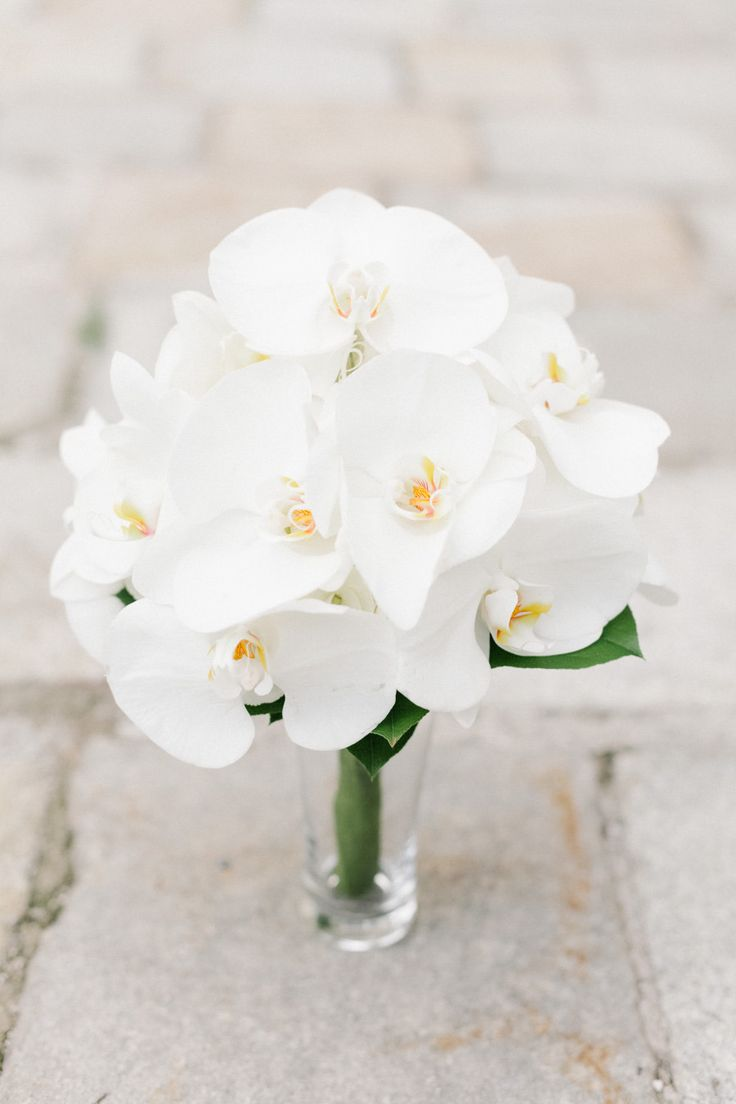 Best 20 white orchids ideas on pinterest white orchid austria wedding from iconoclash photography orchid bouquet weddingwhite dhlflorist Image collections