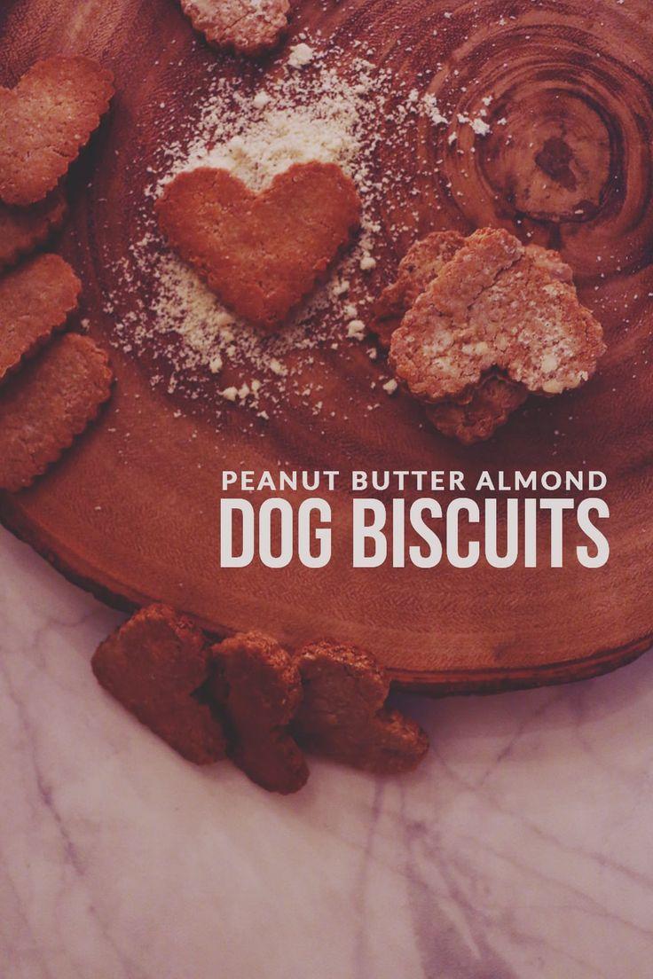 Peanut Butter Almond Dog Biscuits Recipe Fun Dog