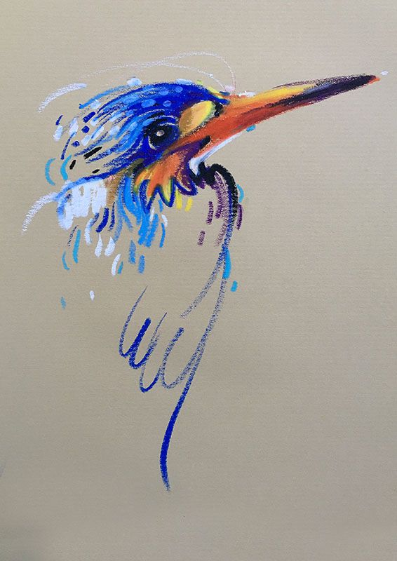Animalines Kingfisher 2 Original Lines Drawing By Tilen Ti