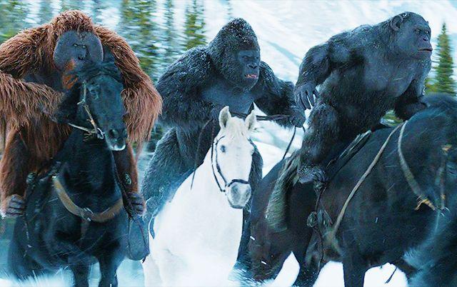 Addictedtoseries.com: MOVIE | War for the Planet of the Apes : Une première bande-annonce dévoilée !