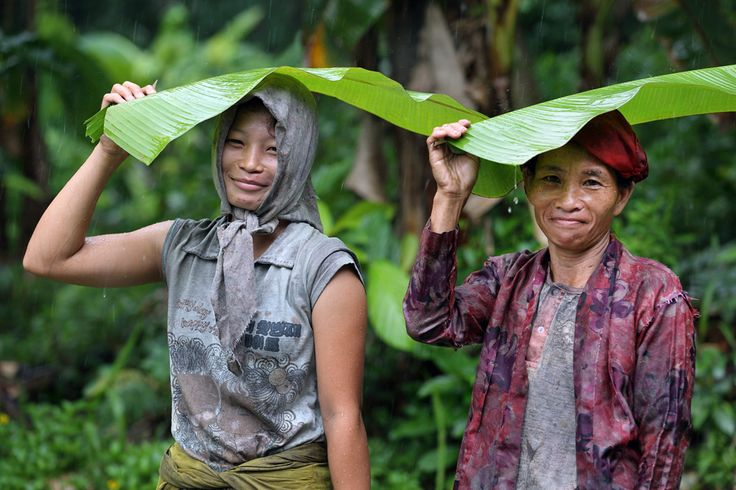Nias Umbrella. Two rubber tappers using banana leaves to protect themselves from the rain. Sawo, North Nias Regency, Nias Island, Indonesia. Photo by Bjorn Svensson. www.northniastourism.com