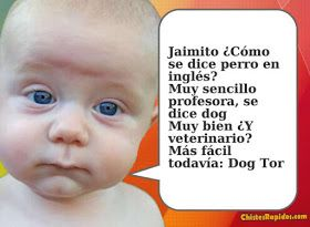 Chiste Como se dice Perro en Ingles