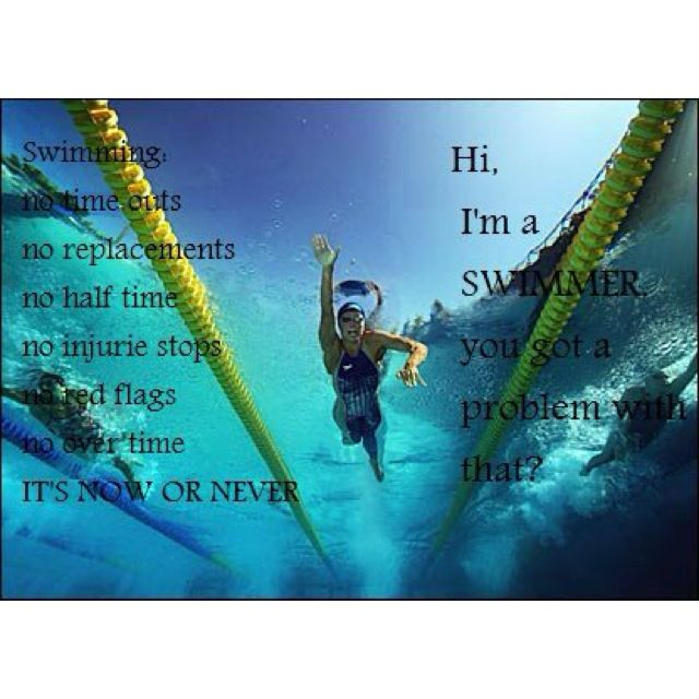 675 Best Images About Chlorine Is My Perfume On Pinterest Swimming Memes Swim And Sprint