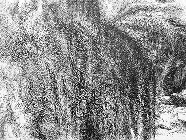 "Saatchi Art Artist Maria Westra; Drawing, ""GARDEN 2"" #art  https://www.youtube.com/watch?v=ksLWULWKoM4"