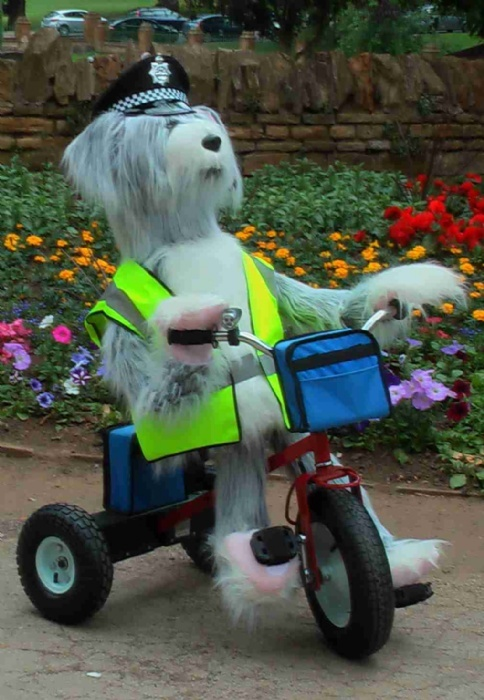 Sheridan the Sheepdog will be cycling around the show ground, stop by and have a chat with him!