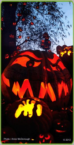 Jack-O-Lantern Spectacular | Roger Williams Park Zoo