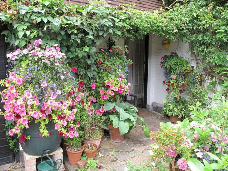 5 inspiring ways to create a cottage style garden small gardens