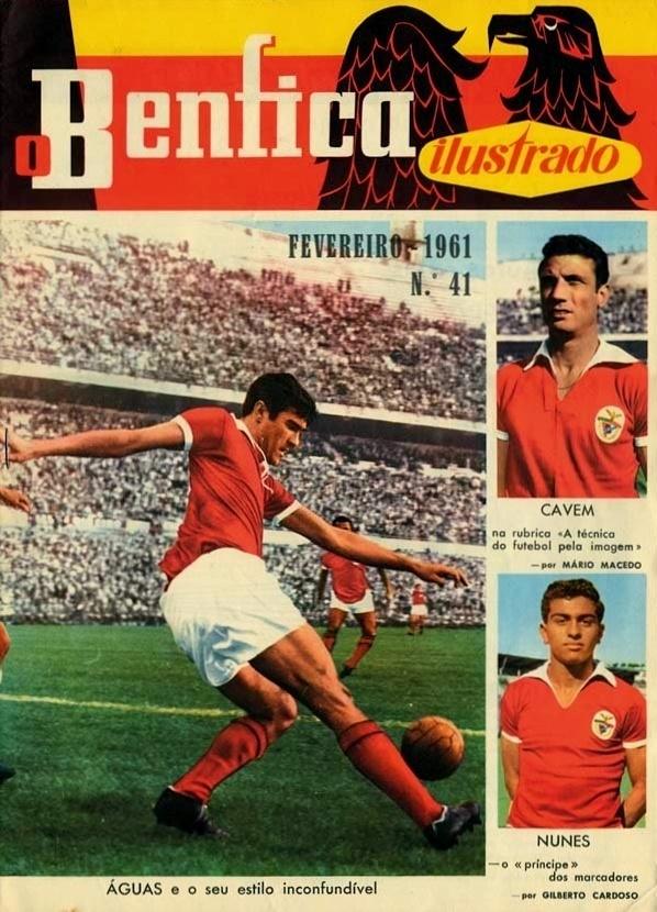 Benfica ilustrado
