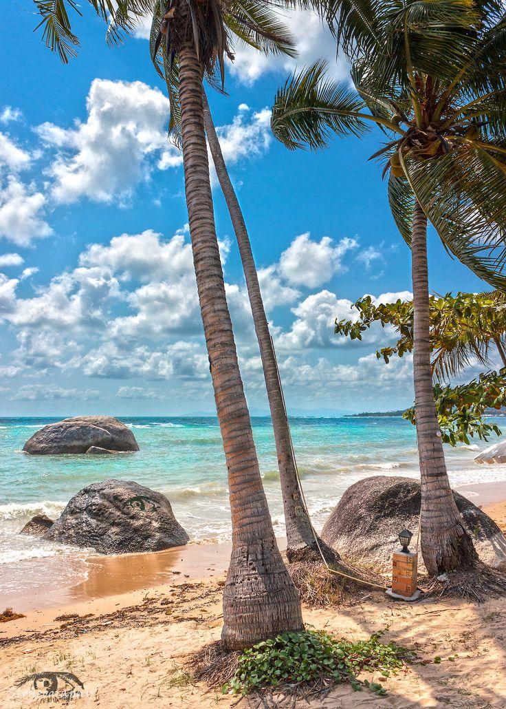 Beach,  Koh Samui, Thailand