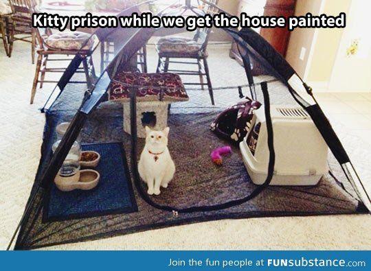 This is genius...