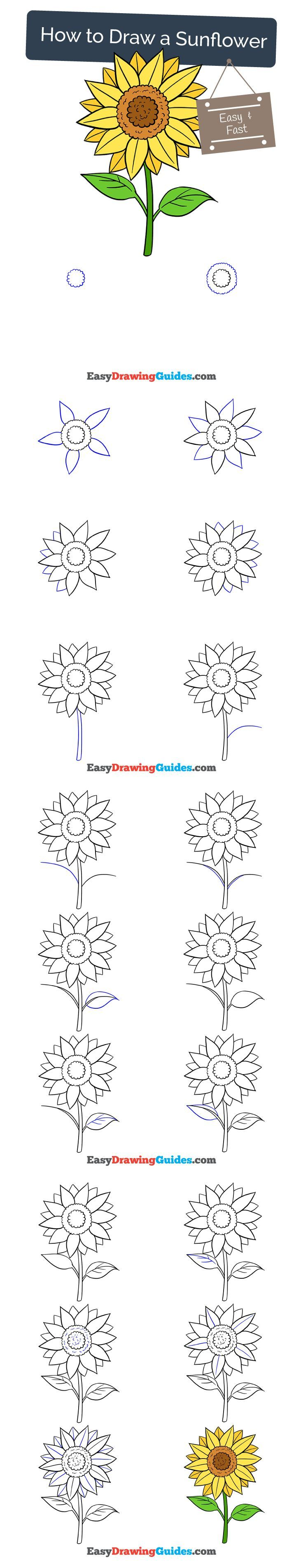 Learn How to Draw a Sunflower: Easy Step-by-Step Drawing Tutorial for Kids and Beginners. #sunflower #drawing. See the full tutorial at https://easydrawingguides.com/how-to-draw-a-sunflower/