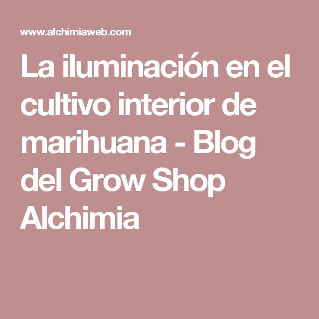 La iluminación en el cultivo interior de marihuana - Blog del Grow Shop Alchimia