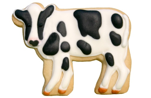 Cow cookie--Mooooo!