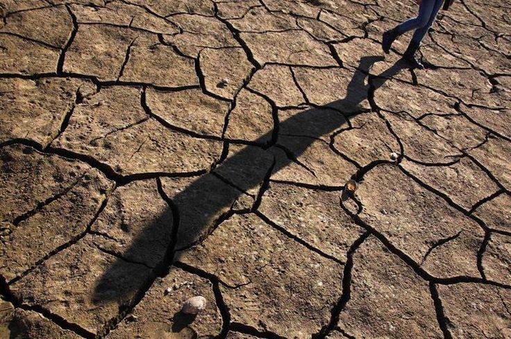 El verano que tuvimos que creernos el calentamiento global