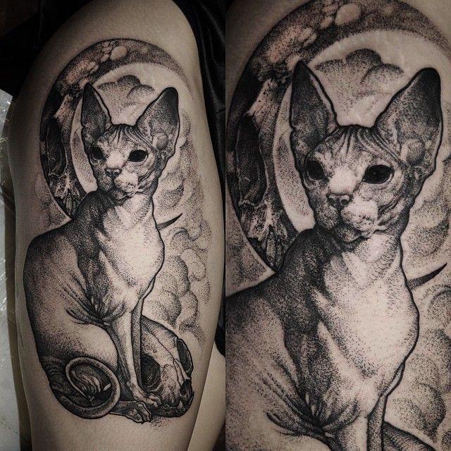 Róbert A Borbás / Grindesign / Tattoos / Hairless cat