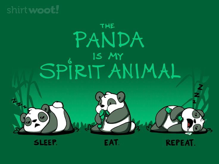 The Panda Is My Spirit Animal