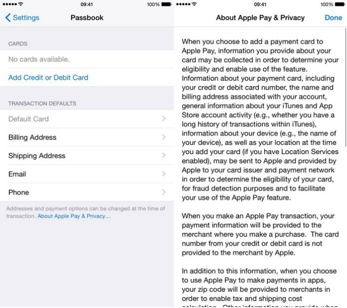 Apple Pay settings page and iPad Touch ID references appear in modified iOS 8.1 beta