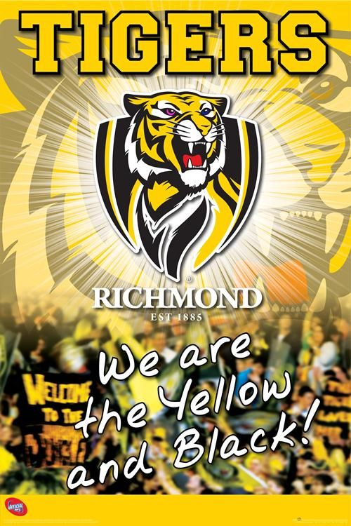 richmond fc finals - Google Search