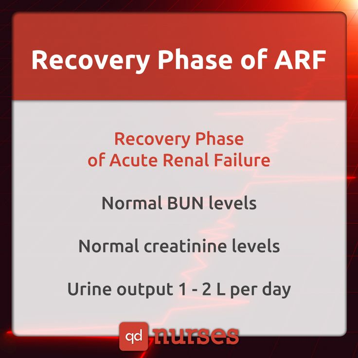 Recovery Phase of acute renal failure, save now and study later! #nursing #nurse #rn #nursingstudent #nclex #mnemonic #meme