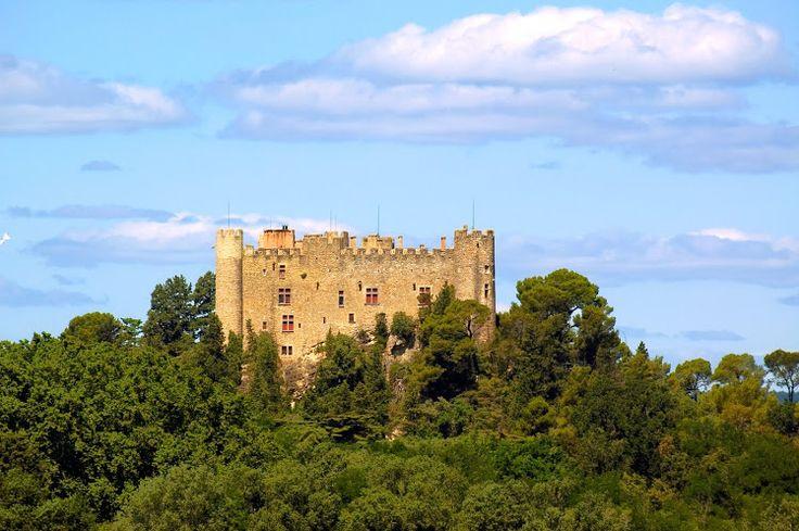 Venez découvrir le château Montfaucon dans l'appellation côte du Rhône. Pour cela il vous suffi de réserver votre visite sur Wine Tour Booking