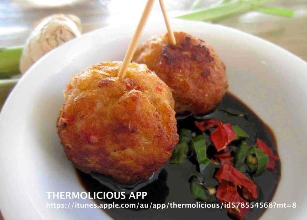 Thermochef recipes for pork