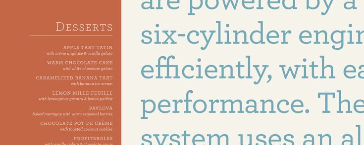 Archer Fonts | Hoefler & Co.  Font research for self-branding
