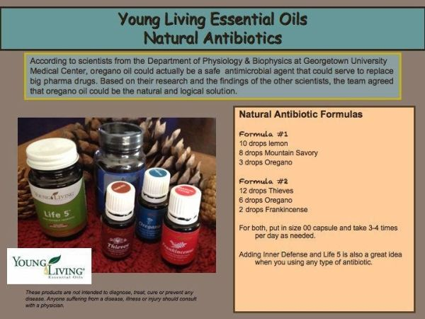 Young Living Oregano, Thieves, Frankincense Essential Oils are Natural Antibiotics! by lennie88