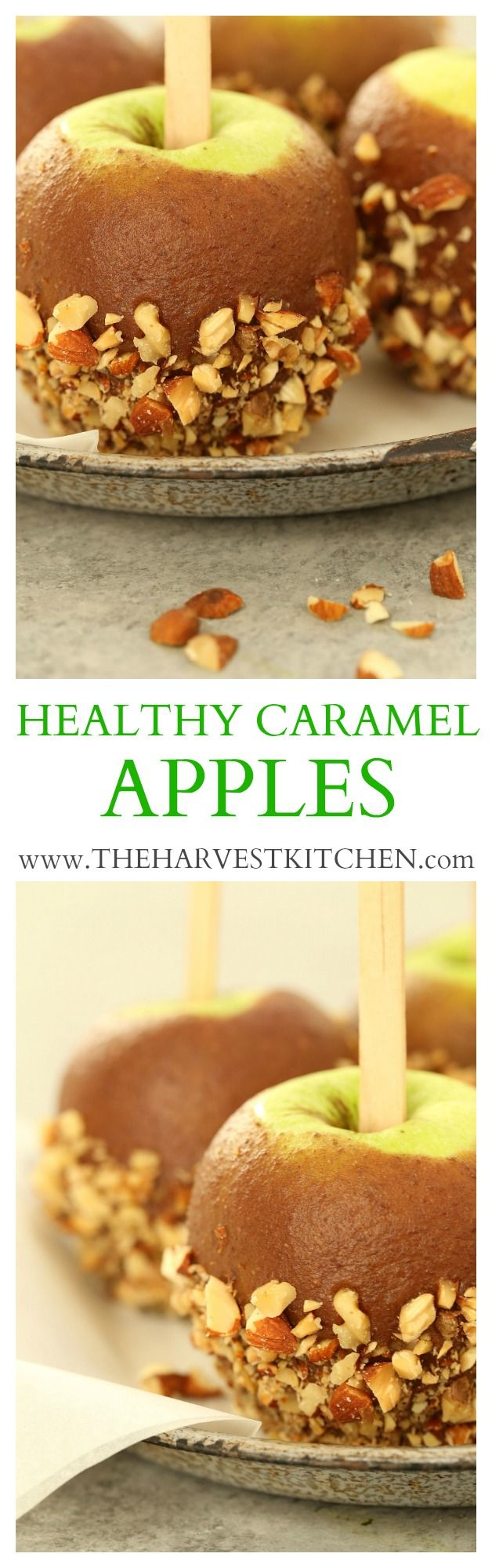 The caramel sauce for these Healthy Caramel Apples is made with dates, pure maple syrup, a wee bit of almond milk, almond butter and coconut oil, and a splash of vanilla. These festive apples are incredibly easy to make and they make a delicious healthier take on a classic fall treat. @theharvestkitchen.com