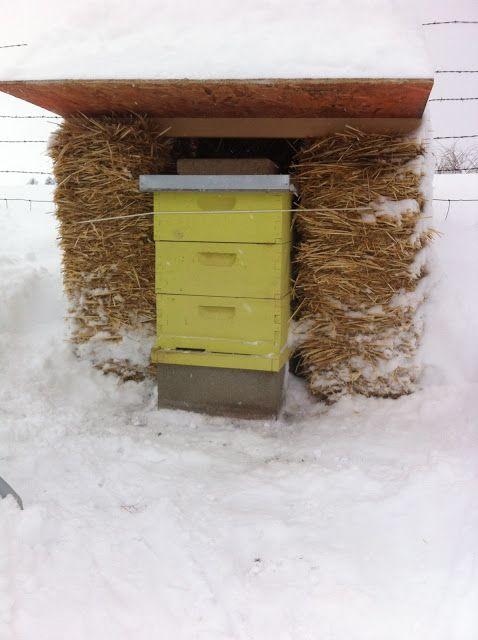 Keeping Bees Through the Winter...   Backyard Farmgals