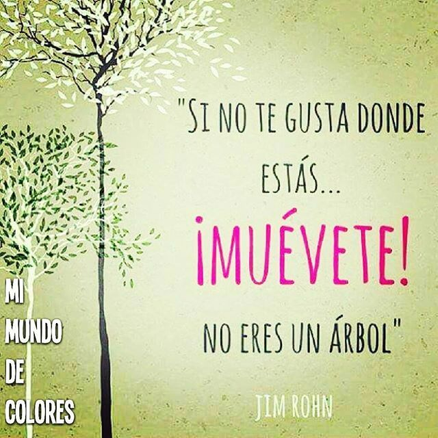 #buenosdias #buenavibra #felizjueves #mimundodecolores