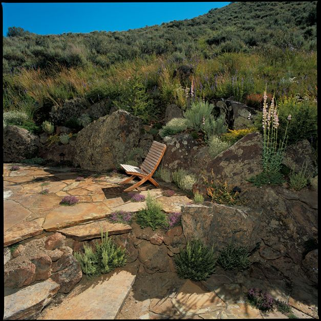 Native Home Garden Design: 140 Best Idaho Plants Images On Pinterest