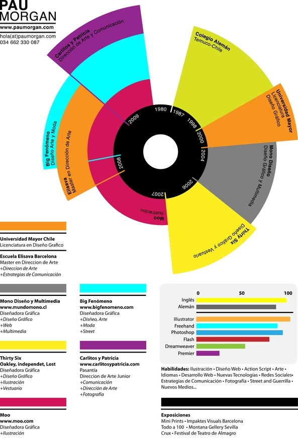 29 best Infographic Resumes images on Pinterest Creative - graphic design student resume