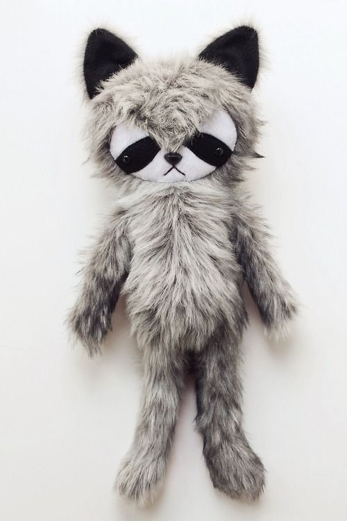 raccoon :: bijou kitty