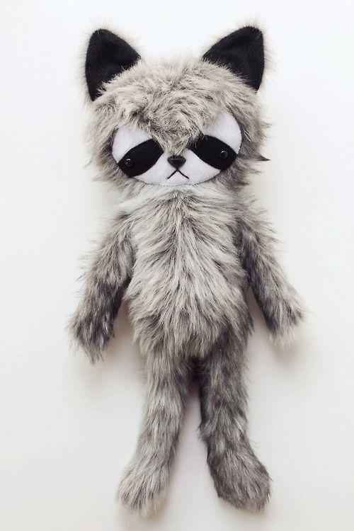 raccoon :: bijou kitty