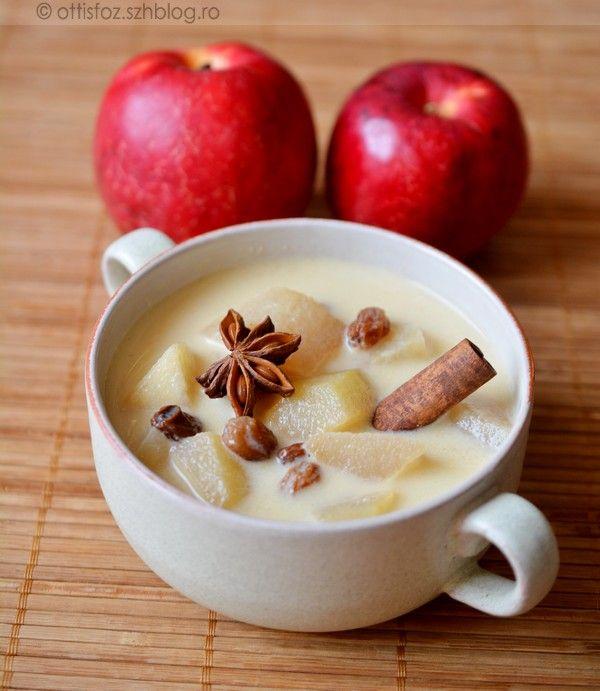Egyszerű gyümölcsleves, almából. Böjtös napokra is kiváló. Mazsolás almaleves Hozzávalók:70 dkg alma, 2 dl tejszín, 1 tasak vaníliás pudingpor, 1 teáskanál vanília aroma, az alma savanyúságától függő mennyiségű...