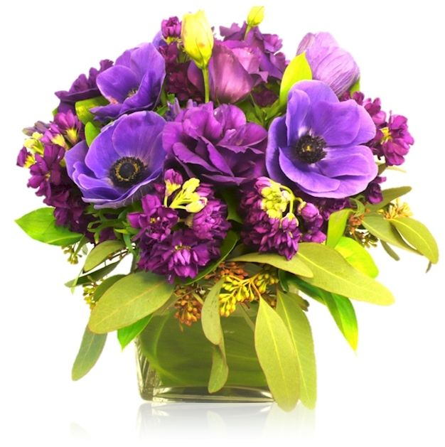 The Finest Quality Floral Designs with Florist Delivery in San Francisco, South San Francisco, Sausalito, Tiburon, Mill Valley, San Rafael and Marin County